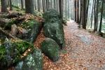 Stezka vede kolem břehu, vlevo pak odbočuje výstupová trasa na vrchol Grosser Arberu, tedy Velkého Javora (1 456m).