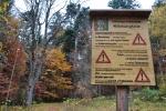 Na konci obce Zwieslerwaldhaus vstupujeme do pralesa, kde můžeme obdivovat až 500 let staré stromy s převahou buků.