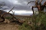 California, Death Valley, Mesquite Sand Dunes - krajina