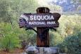 California, Sequoia National Park - přicházíme do parku
