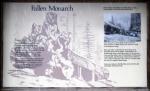 California, Sequoia National Park - Fallen Monarch, infocedule