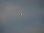 letadlo startující z pražského letiště V. H.; z rozhledny to je asi tak 15 km ...