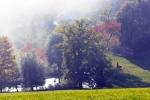 Okolí vesničky Škarez - rybníček, v pozadí v mlze hájovna