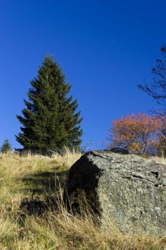 lokalita Kamenná hlava