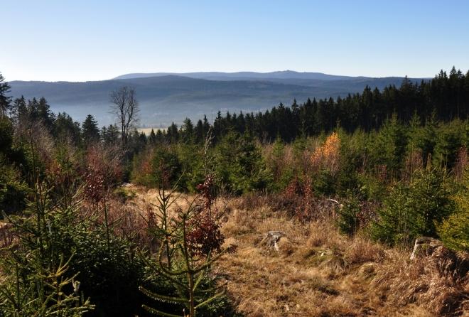 Za Jeleními vrchy s Medvědí stezkou se zdvihá hraniční hřeben se Smrčinou, Plechým a Trojmeznou.