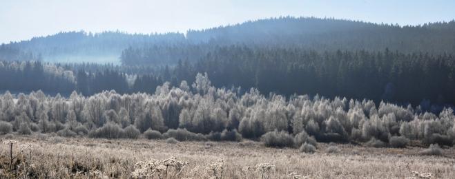 Houbový vrch s ledovou dekorací...