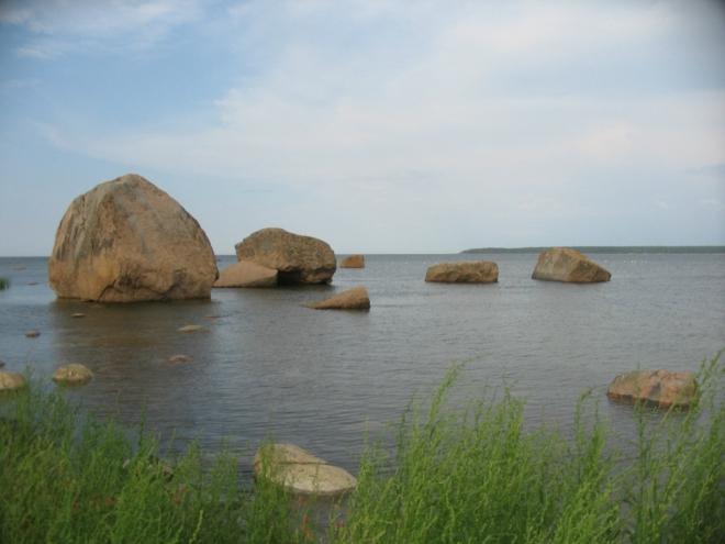 Jistě jste si už všimli té spousty různě velkých kamenů, které jsou roztroušeny v pobřežních mělčinách. Oblast Käsmu je bludnými balvany doslova zahlcena, nikde jinde v Estonsku se nevyskytují tak hojně jako zde. Tyto vodní jsou navíc náležitě zmalované od mořského ptactva.