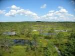 Rašeliniště Viru (Viru raba), Estonsko