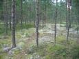 Národní park Lahemaa