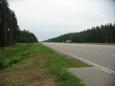 Estonská dálnice A1 při národním parku Lahemaa