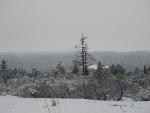 Jezerní slať, mrazivé místo v naší zemi.