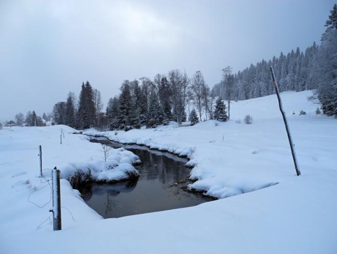 Kvildský potok, který obklopují sejpy, pozůstatky po dávné těžbě zlata. To zde hledali již Keltové.