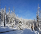 Sněhu s výškou postupně přibývá a již není problém ani s podmáčenými a dnes umrzlími místy.