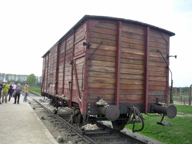 Vagón transportovaných