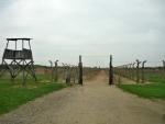 V nitru Birkenau