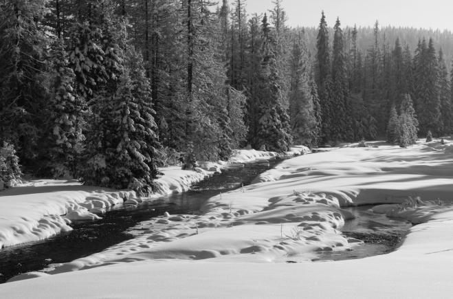 Toto je soutok Javořího potoka s Roklanským.