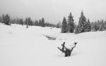 Smutek tak podkresluje místa románu Karla Klostermanna Ze světa lesních samot. Ještě krutější zimy jsou v něm krásně popsány. Pokud jste ještě knihu nečetli, neváhejte!