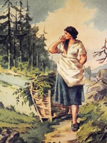 Tak kam děvenko? Přes močály na Černé hoře do Kvildy? Tak dej pozor, hory jsou zrádné a chyby neodpouští...