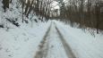 silnička z Černého vršku - část Berouna - k řece
