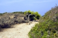 Rozpálené cesty Akropole jsou místy vybaveny lavičkami ve stínu stromů