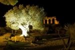 Na zpáteční cestě ještě postojíme u nasvíceného Tempio di Giunone