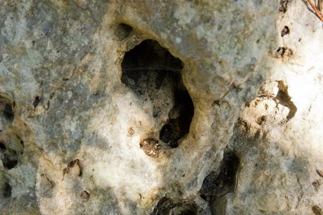 Syrakusy, Archeologický park - detail skály