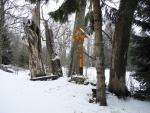 Z Nového Údolí stoupáme po červené TZ po čerstvě napadaném sněhu.