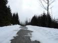 Ještě chvíli stoupáme úbočím vrcholu V pařezí (1 146m), kde je podle mapy také několik skalek. Prohrnutá cesta ale bohužel na hřebeni končí.