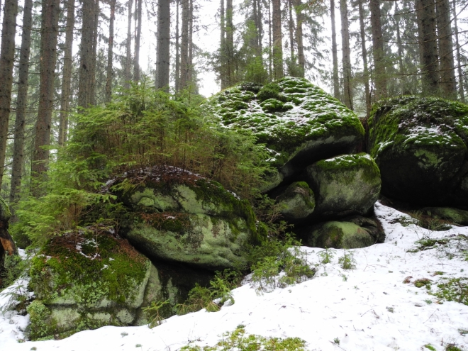 Od Schwarzenberského kanálu sestupujeme do Stožce pohodlně po Ferdinandově cestě. Kolem je několik zajímavých skal ukrytých mezi smrčinou.