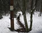 Odbočka pod Světlou horou (1 123m) vede k cestě Lipka-Borova Lada a také k prameni Volyňky.