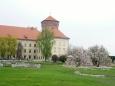 V nitru rozkvetlého Wawelu