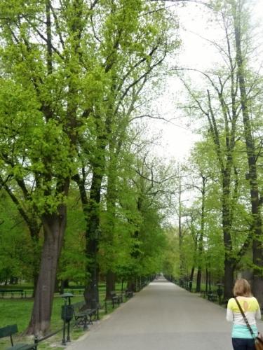 V jednom z parků pod katedrálou