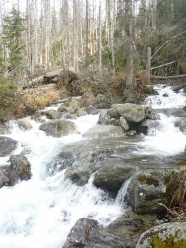 Roztátý sníh teče z vrcholků