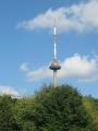 Vilniuská televizní věž