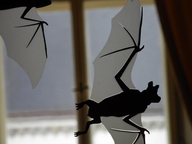 Zajímavostí zdejšího zámku jsou i kolonie několika druhů netopýrů, kteří našli v podkrovních prostorách svá letní sídla.Výstava proto ukazuje také rozmanitost netopýřích druhů vyskytujících se v České republice a představuje netopýry jako jedinečné živočichy, kteří si zaslouží naši ochranu. Najdete zde informací o způsobu jejich života a panely s fotografiemi a doprovodným komentářem.