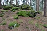 Na hoře jsou patrné kamenné obranné valy. Hradiště je dlouhé přes čtyři sta metrů a široké 32 až 114 metrů. Keltská pevnost vznikla kombinací přirozených skalních stěn a uměle navršeného kamenného valu.