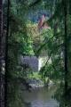 Mezi stromy se občas objevil Zvíkov
