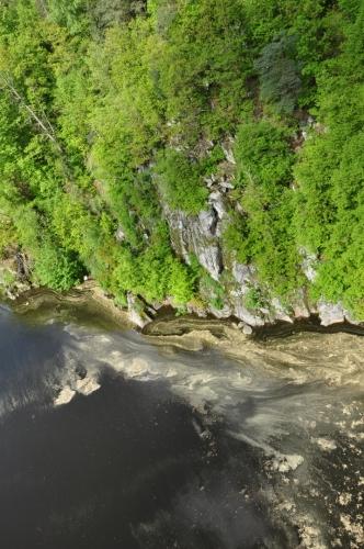... a zatímco pod mostem záplavy pylu lemují skalnaté břehy porostlé bujnou vegetací ...