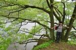 ... a ze stromů jejich sílu, co berou si z půdy hor ...