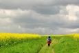 ... když cesty se ztrácí v poli a bouře je nadohled ...