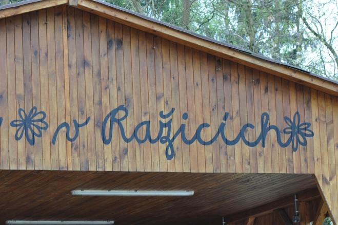 NS Po stopách permoníků ze Zlaté hory vede přes přírodní amfiteátr Ražice, kam jsme před lety často rádi zavítali na folkový Ražiciý pražec. Ten se koná i letos, jako již tradičně první červnovou sobotu - 1.6.2013 od 13h. Jde již o 29. ročník festivalu folk, country a tramspké hudby.