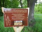 Asi 200 m od sochy je místo jako svořené ke krátkému odpočinku.
