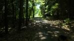 cesta křivoklátským lesy pod Dlouhou skálou k Jouglovce ...