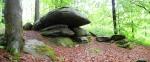 Žižkův kámen je prvním zajímavým skalním útvarem, se kterým se setkáváme. Od zámku k němu vede naučná stezka Příroda a lesy Pošumaví, která je sice jen 2 km dlouhá, ale má devět zastavení.