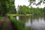 Jdeme i kolem menších rybníků. Jedním z nich je Malá Lípa.