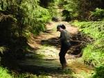 Medvědí potok, kolem něhož stoupáme postupně až pod vrchol Smrčiny, poslouží i k ochlazení nohou.