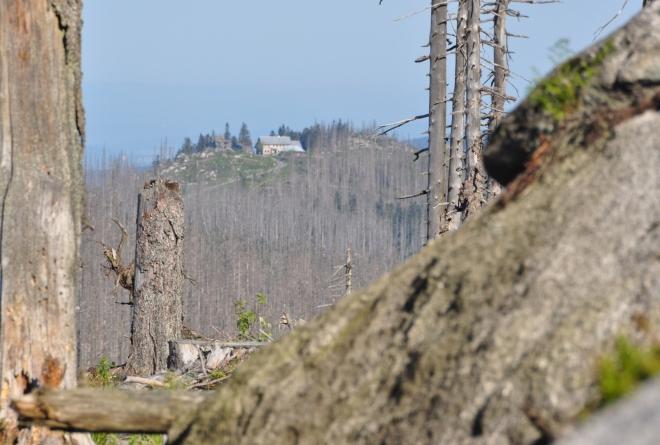 V dohledu je horská chata na Třístoličníku. Cesta k němu by trvala asi dvě hodiny.