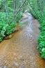 Tento potok sbírá vody ze slatí, kde je vyhlášena l. zóna NP.