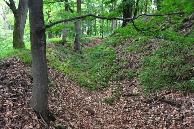 Archeologický průzkum zde odhalil pevné hradisko z 11. stol., které bylo pravděpodobně opuštěno po zbudování Rýzmberka. Oválné opevnění tvoří dva hluboké terasovitě umístěné příkopy a jádro akropole je obehnáno třetím hlubokým příkopem.