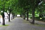 Kdyňské náměstí tolik překypuje zelení, že je docela nepřehledné. V houštině můžete najít několik památníků a skrytých laviček.